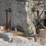 Restauration de jardin